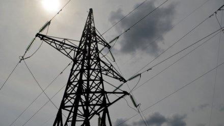 Энергетики вновь попросили воронежцев соблюдать правила в охранных зонах ЛЭП