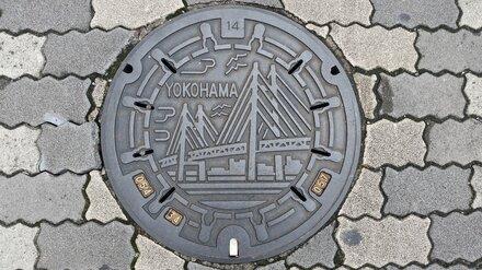 Дизайн люков для проспекта Революции в Воронеже выберут до конца сентября