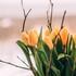 Воронежские метеорологи дали прогноз на длинные мартовские выходные