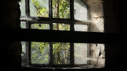 Стало известно, сколько лет было покончившей с собой девушке из воронежского села