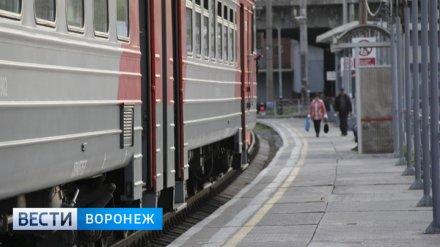 На ноябрьские праздники из Воронежа в Москву пустят дополнительный поезд