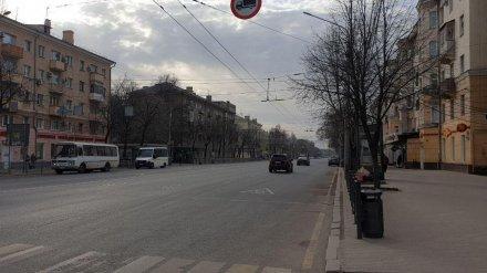 Воронеж стал лидером по уровню самоизоляции среди городов-миллионников