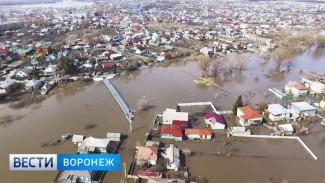 В Калаче уровень воды в реке упал на два десятка сантиметров