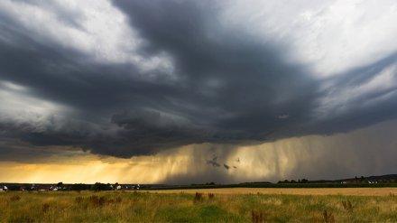 В Воронежскую область в выходные снова придут дожди с грозами