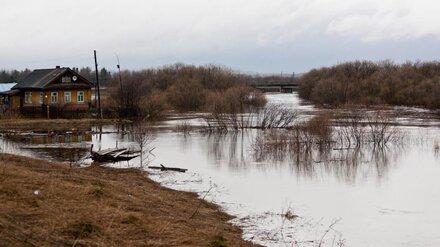 В Воронежской области из-за паводка затопило три моста