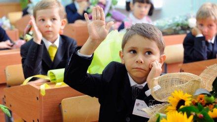 В этом году школы Воронежской области примут свыше 11 тыс. первоклассников
