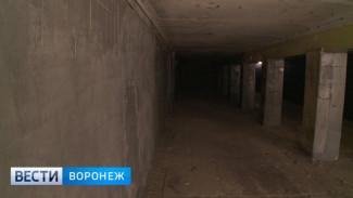 Власти Воронежа объявили конкурс по поиску концессионеров для 4 подземных переходов