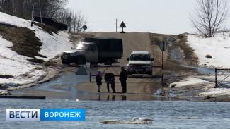 Воронежцы собираются у разобранного моста через Дон, чтобы посмотреть на ледоход