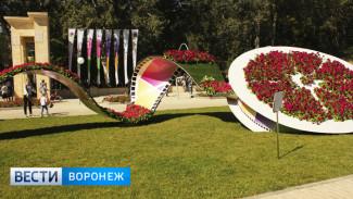 В Воронеже ограничат въезд автомобилей в Центральный парк