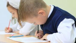 В ближайшие два года в Воронежской области откроются семь новых школ