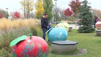 На Советской площади в Воронеже появилось 10 огромных яблок с зашифрованными загадками