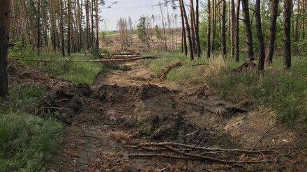 В Воронеже неизвестные перекопали дорогу к скандально известному озеру Круглое
