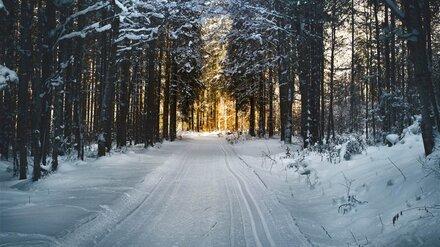 В Воронеже жена нашла 35-летнего мужа повешенным в лесу