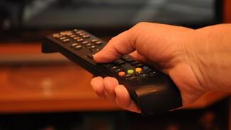 Воронежец украл из квартиры матери два телевизора