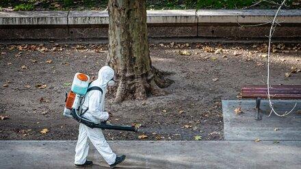 Число заболевших коронавирусом воронежцев перевалило за 11,5 тысяч