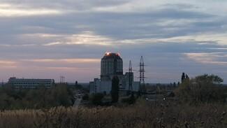 Очередная попытка обезглавить ВАСТ в Воронеже закончилась провалом