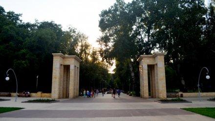 Концепцию развития воронежского Центрального парка представят в декабре 2018 года
