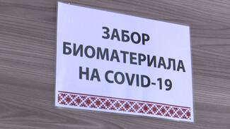 В диагностическом центре Воронежа появится вторая лаборатория для тестов на коронавирус