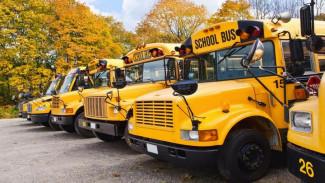 В Воронеже запустят бесплатные автобусы к школе на Ломоносова