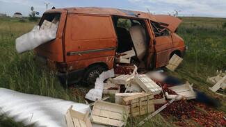 Водитель минивэна разбился в ДТП на трассе в Воронежской области