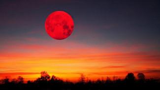 Синоптики оценили шансы увидеть «кровавую Луну» и Марс в Воронежской области