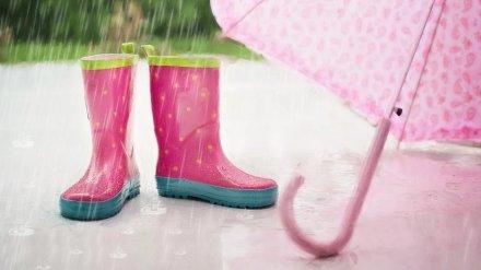 Очередные выходные в Воронежской области будут холодными и дождливыми