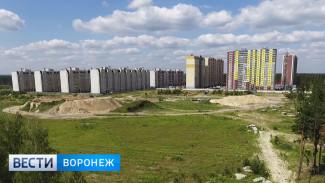 «Нас не слышат». В Воронеже жителей нового ЖК оставили без обещанной школы