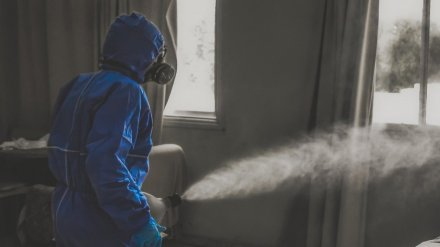 Вспышку коронавируса выявили в правительстве Воронежской области