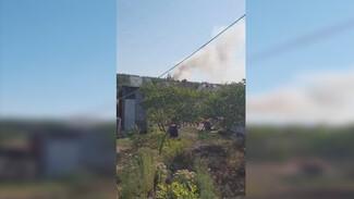 У воронежских многоэтажек загорелся лес: появилось видео
