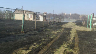Трое детей устроили крупный ландшафтный пожар в Воронежской области