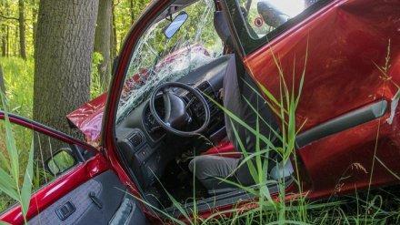 Под Воронежем иномарка вылетела в кювет и перевернулась: погиб водитель