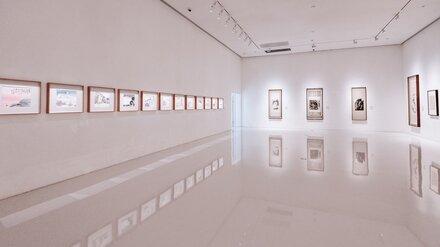 В Воронежской области разрешили выставки на открытом воздухе