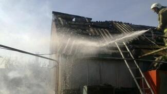 Тела двоих детей нашли в сгоревшем доме в Воронежской области