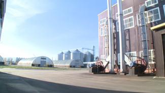 В Воронежской области построят завод по глубокой переработке зерна