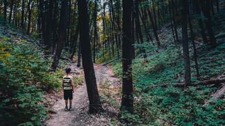 Платоновфест позвал воронежцев на спектакль в чаще леса