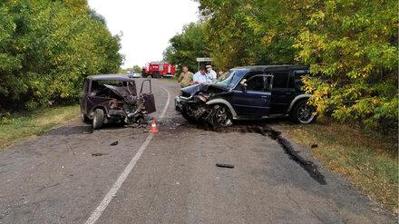 Пьяный водитель спровоцировал ДТП с пострадавшими в Воронежской области