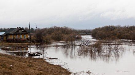 В Воронежской области под угрозой затопления оказались 55 сёл