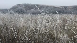 Воронежцам показали окутавшую Дивногорье зимнюю сказку