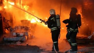 В Воронежской области устроившая три поджога мстительница избежала колонии