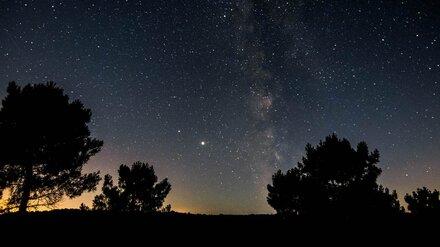 Воронежцы увидят яркий звездопад в первую ночь осени