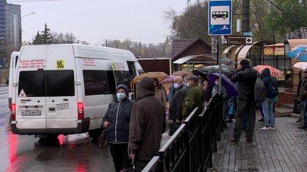Воронежский перевозчик пожаловался на снижение выручки
