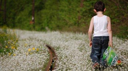 Под Воронежем потерявшийся 4-летний малыш прошёл 7 км за день
