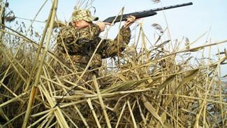 Воронежские власти рассказали о новых правилах охоты на пернатых весной