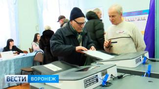 Облизбирком: в Воронежской области выборы прошли без серьёзных нарушений