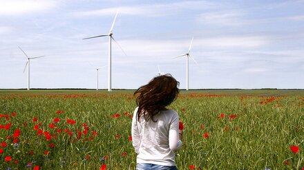 Ветряную станцию за 27 млрд рублей могут построить в Воронежской области