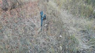 Владельца воронежского мясокомбината простили за убийство на охоте водителя
