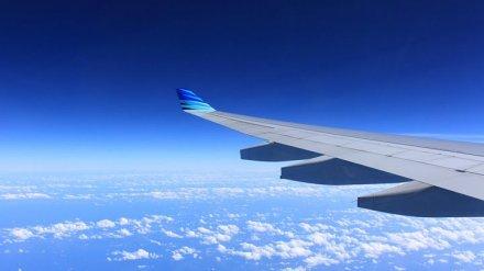 В Воронеже из-за смерти пассажира на борту экстренно сел самолёт