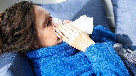 Учёные назвали два эффективных продукта против коронавируса