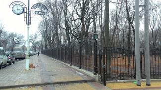 Мэрия предложила воронежцам решить судьбу одного из старейших парков