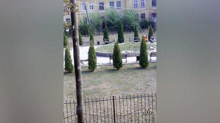 Вандалы разворотили скамейки на Аллее Героев под Воронежем
